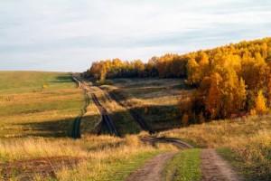 Район зыково осень